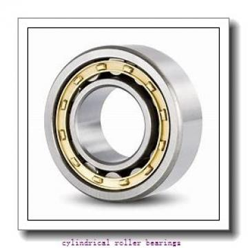 2.165 Inch | 55 Millimeter x 4.724 Inch | 120 Millimeter x 1.693 Inch | 43 Millimeter  SKF NU 2311 ECP/C3  Cylindrical Roller Bearings