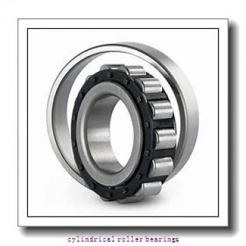 45 mm x 100 mm x 36 mm  SKF NUP 2309 ECP  Cylindrical Roller Bearings